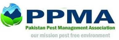 Pest Management Service Karachi