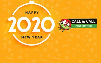 happy-new-year-2020-celeberations-by-call-n-call-pest-control